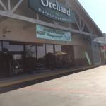 Orchard in South Pasadena1